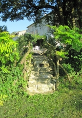 Eco-tourism at our self catering holiday gites in the Poitou Charentes, France